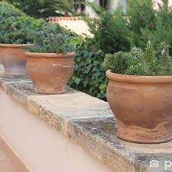Potten en plantenbakken